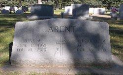 Theodore W. Arent