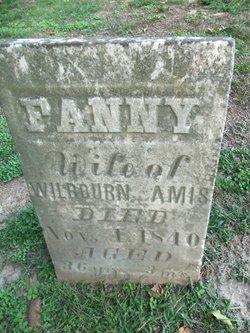 Frances Ann Fanny <i>Davis</i> Amis