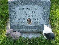 Joseph Lane Ash