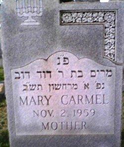 Mary <i>Smith</i> Carmel