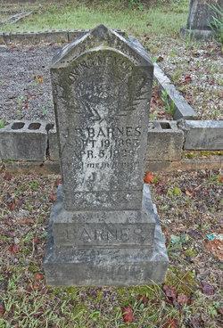 John B Barnes