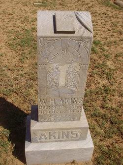 William Henry Akins