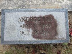 Andrew L Erwin