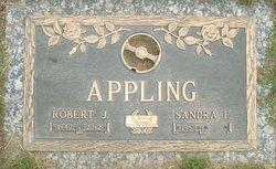 Robert J Appling