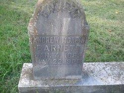 Andrew Morris Barnett