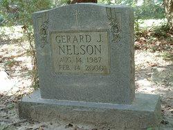 Gerard J Nelson
