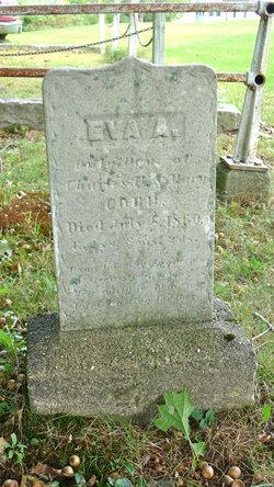 Eva A. Cobb
