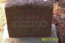 Anthony J Hermsen