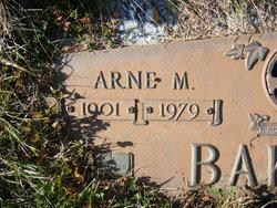 Arne M Bakken