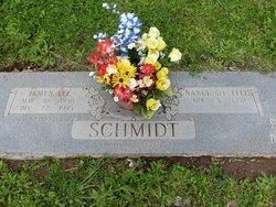 Nanci <i>Ellis</i> Schmidt