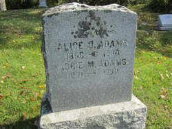 Abbie M Adams