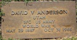 David V Anderson