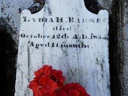 Lydia H Barnes