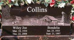 Bondelia <i>Bruce</i> Collins