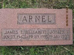 Emily Elizabeth <i>Wood</i> Arnel