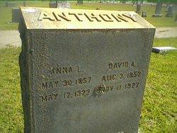 David A. Anthony