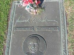 Kenneth A Adams