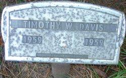 Timothy W Davis