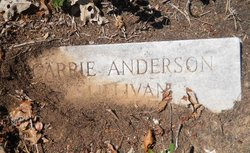 Carrie <i>Sullivan</i> Anderson