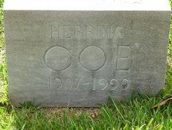Matchett Herring Coe