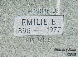 Emilie E Godfrey