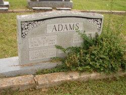 Amanda Elizabeth Mandy <i>Tollett</i> Adams