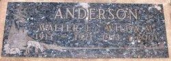 Walter J Anderson