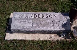 Bernard Paul Anderson