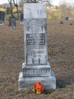 Abner C. Biggerstaff