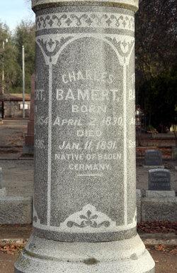 Charles Bamert