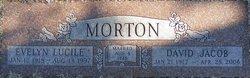 David Jacob Morton