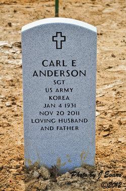 Carl E Anderson, Jr