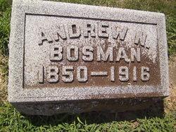 Andrew N. Bosman
