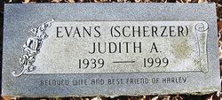 Judith A <i>Scherzer</i> Evans