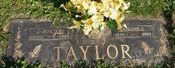 Corene <i>Cecil</i> Taylor