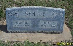 Josephine Beagle