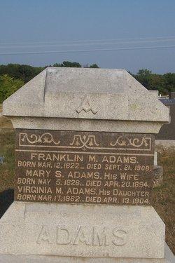 Virginia M Adams