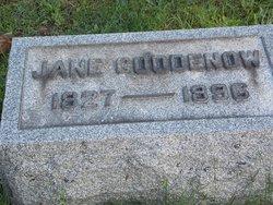 Mary Jane <i>Pomeroy</i> Goodenow