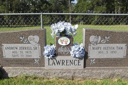 Andrew J Lawrence