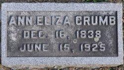 Anna Elizabeth <i>Carr</i> Crumb