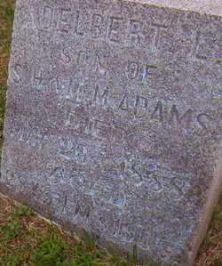 Adelbert L Adams