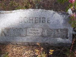 Raymond Scheibe