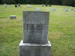 James P Callahan