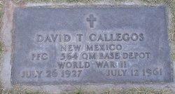 David T Gallegos
