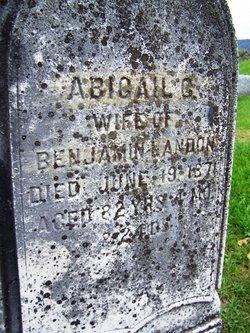 Abigail Landon