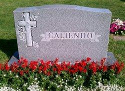 Ralph J. Caliendo, Sr