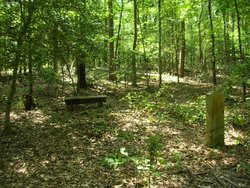Thomas Adams Graveyard