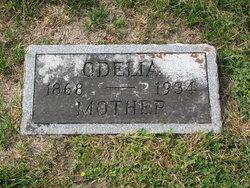 Odelia <i>Abts</i> Book