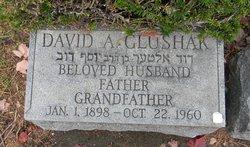 David A Glushak