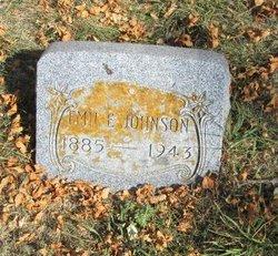 Emil E Johnson